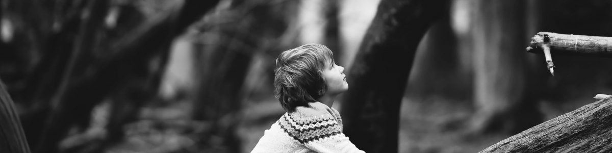 Black and white photo of curious little boy wearing a sweater and climbing a large tree trunk